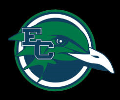 Endicott Men's Ice Hockey Opens with Playoff Win – Men's and Women's Basketball Post Wins – Four Game Reports